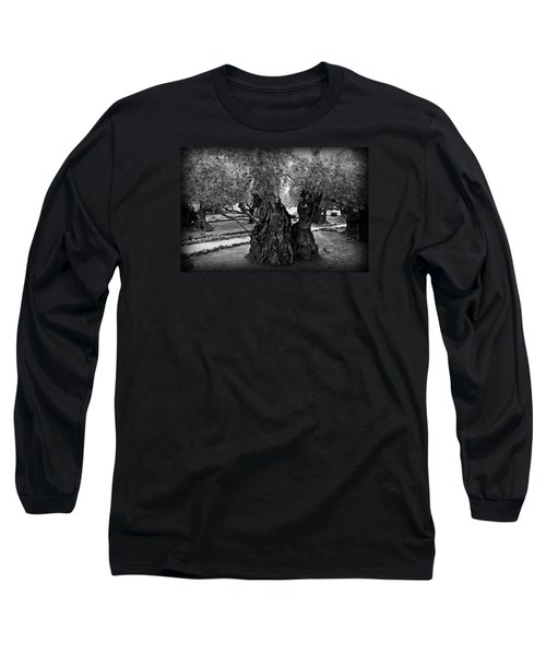 Garden Of Gethsemane Olive Tree Long Sleeve T-Shirt