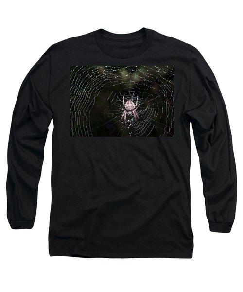 Long Sleeve T-Shirt featuring the photograph Garden Spider by Matt Malloy