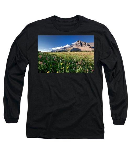 Garden Wall At Dusk Long Sleeve T-Shirt by Aaron Aldrich