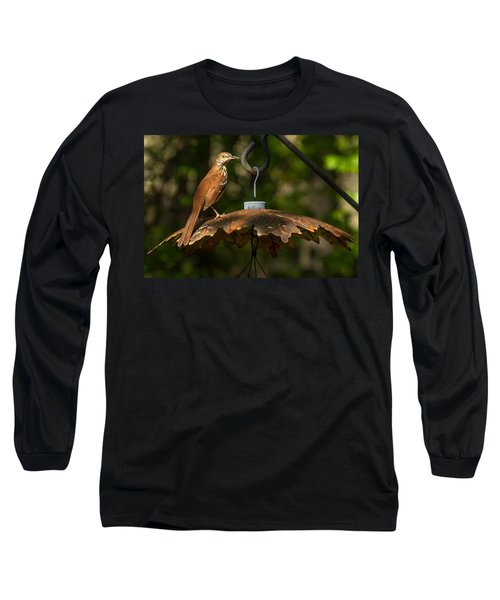 Georgia State Bird - Brown Thrasher Long Sleeve T-Shirt