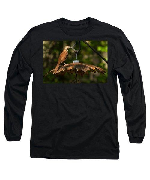 Long Sleeve T-Shirt featuring the photograph Georgia State Bird - Brown Thrasher by Robert L Jackson