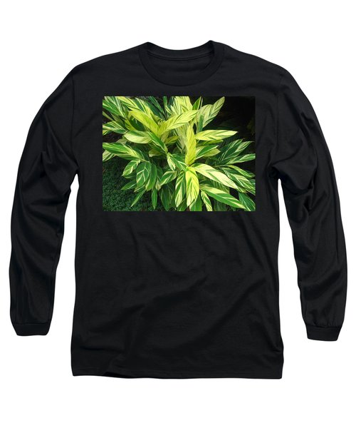 Ginger Lily. Alpinia Zerumbet Long Sleeve T-Shirt by Connie Fox