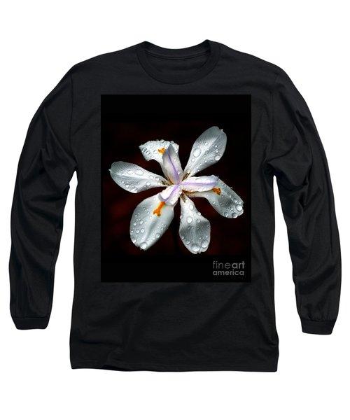 Glisten Long Sleeve T-Shirt by Angela Murray