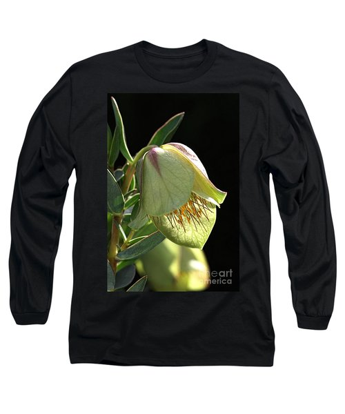 Glow Of The Bell Long Sleeve T-Shirt