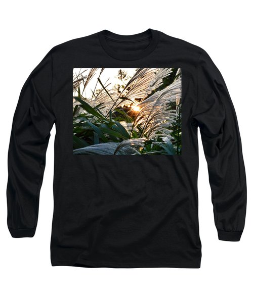 Glowing Pampas Long Sleeve T-Shirt