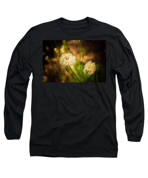 Golden Hour Long Sleeve T-Shirt by Sara Frank