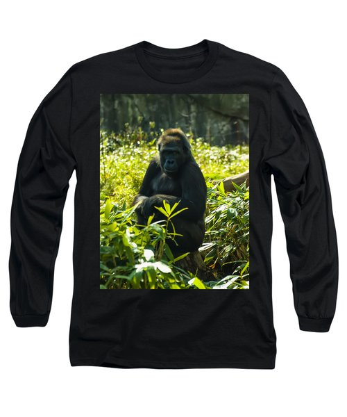 Gorilla Sitting On A Stump Long Sleeve T-Shirt by Chris Flees
