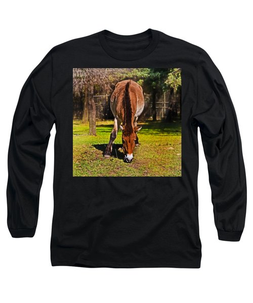 Grazing With An Attitude Long Sleeve T-Shirt