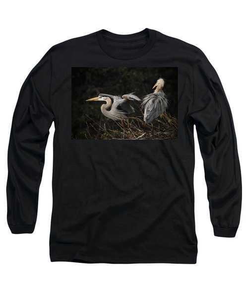 Great Blue Herons  Long Sleeve T-Shirt