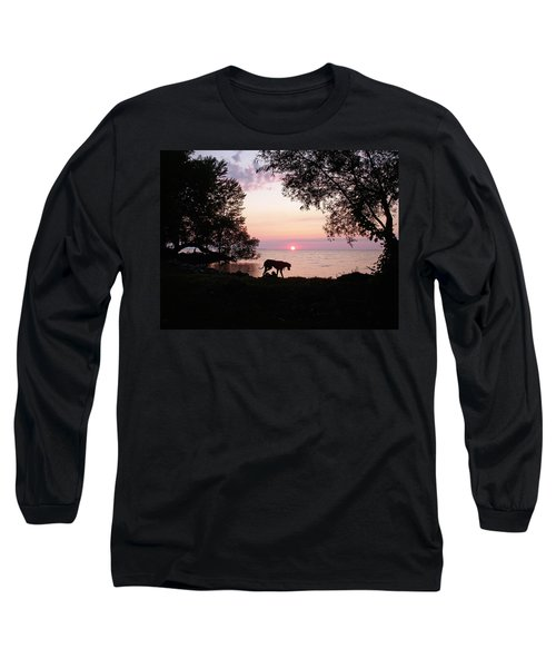 Long Sleeve T-Shirt featuring the photograph Great Dane Sunset by Aimee L Maher Photography and Art Visit ALMGallerydotcom