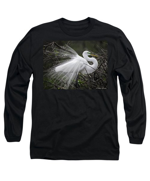 Great Egret Preening Long Sleeve T-Shirt