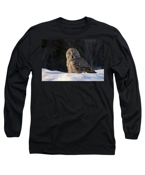 Great Gray Owl In Snow Long Sleeve T-Shirt