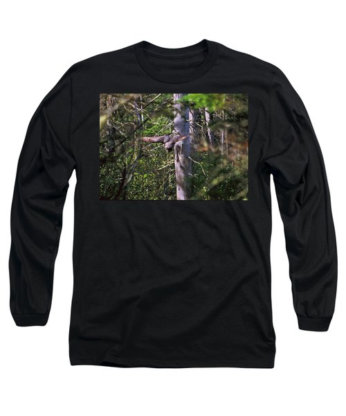 Great Grey Owl Pounces  Long Sleeve T-Shirt by David Porteus