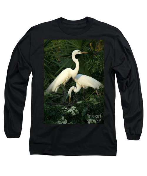 Great White Egret Mates Long Sleeve T-Shirt