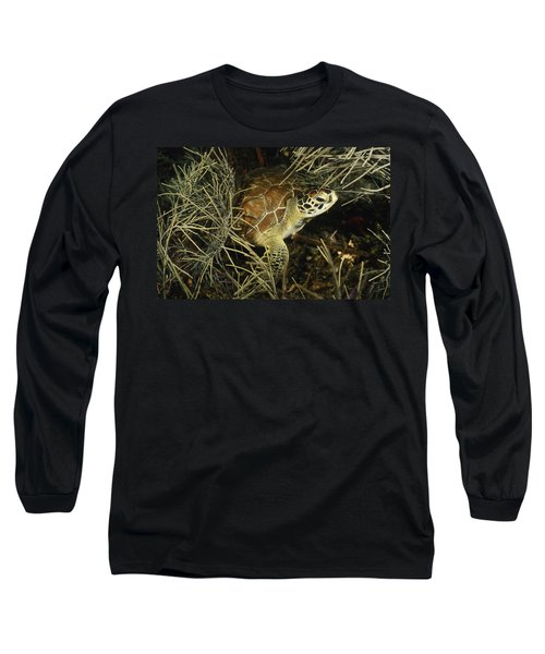 Green Turtle In Soft Corals Long Sleeve T-Shirt