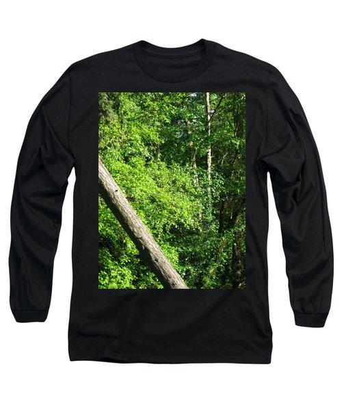Greenbelt Fall Long Sleeve T-Shirt by David Trotter