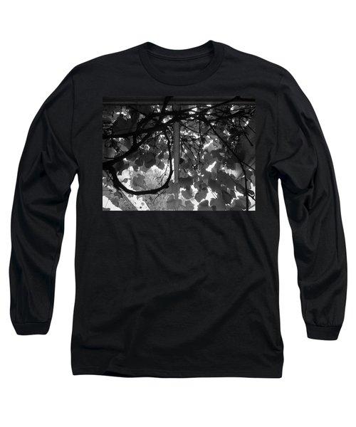 Long Sleeve T-Shirt featuring the photograph Gropius Vine - Black And White by Joseph Skompski