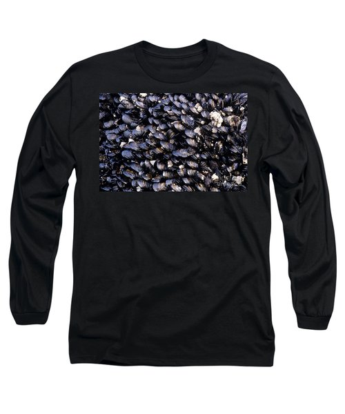Group Of Mussels Close Up Long Sleeve T-Shirt