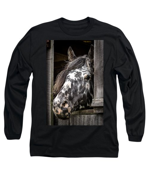 Guard Horse-what's The Password? Long Sleeve T-Shirt