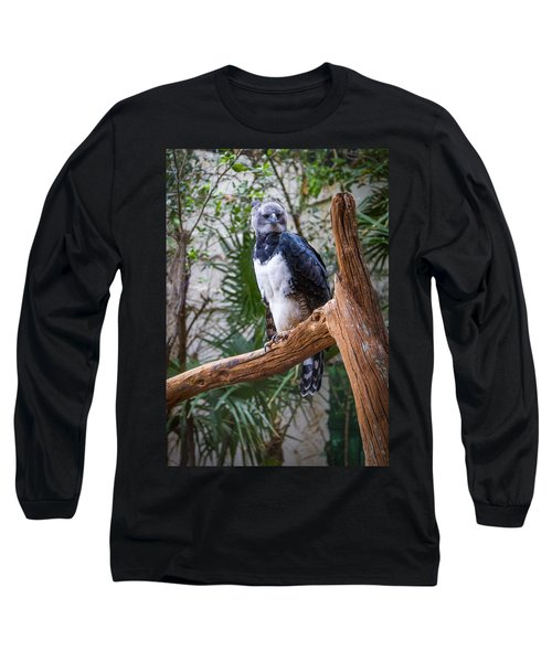 Harpy Eagle Long Sleeve T-Shirt by Ken Stanback