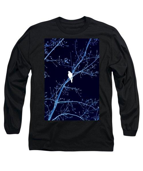 Hawk Silhouette On Blue Long Sleeve T-Shirt