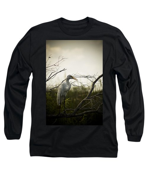 Heron At Dusk Long Sleeve T-Shirt by Bradley R Youngberg