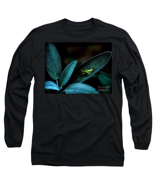 Long Sleeve T-Shirt featuring the photograph Hey  I'm Trying To Hide by Debra Fedchin