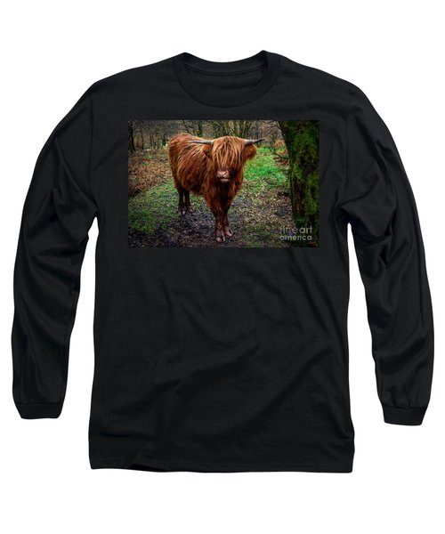 Highland Beast  Long Sleeve T-Shirt