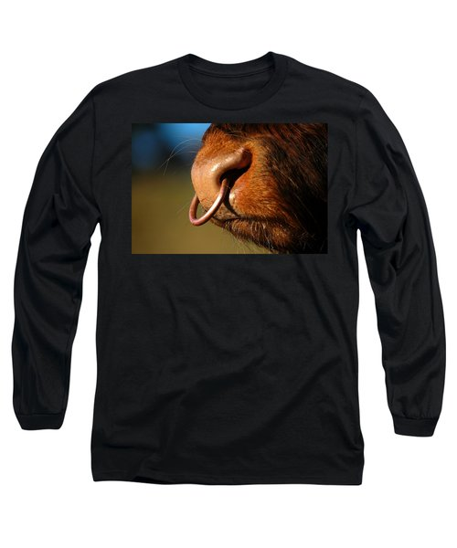 Highland Bull Long Sleeve T-Shirt