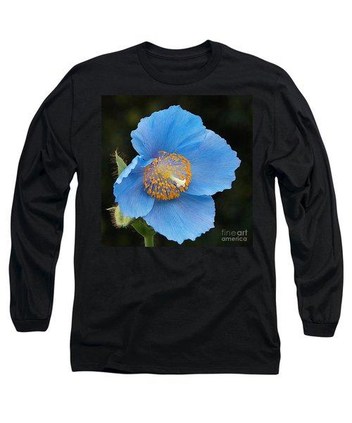 Himalayan Gift -- Meconopsis Poppy Long Sleeve T-Shirt by Byron Varvarigos