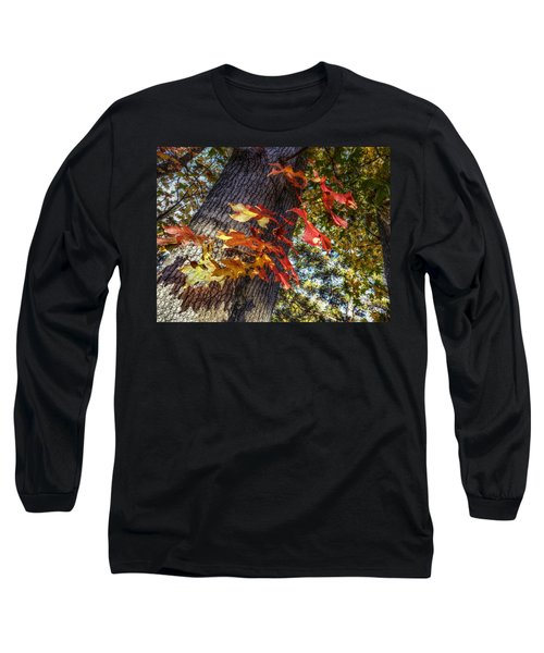 Hints Of Fall Long Sleeve T-Shirt by Linda Unger