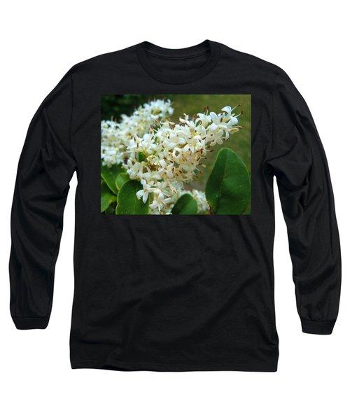 Long Sleeve T-Shirt featuring the photograph Honeysuckle #1 by Robert ONeil