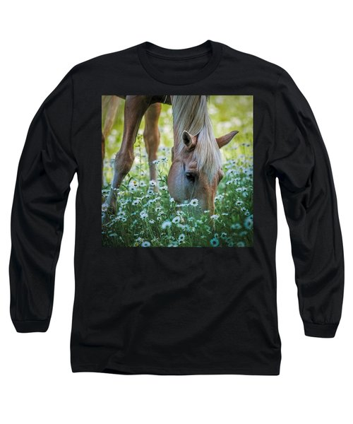 Horse And Daisies Long Sleeve T-Shirt by Paul Freidlund