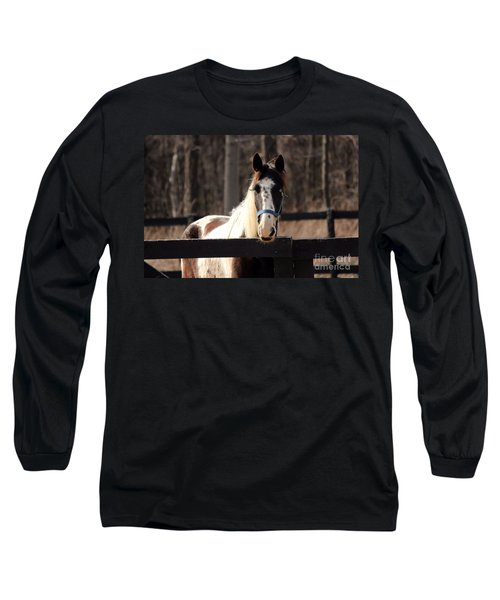 Horse At The Gate Long Sleeve T-Shirt