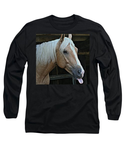 Horse Feathers Long Sleeve T-Shirt