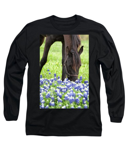 Horse With Bluebonnets Long Sleeve T-Shirt