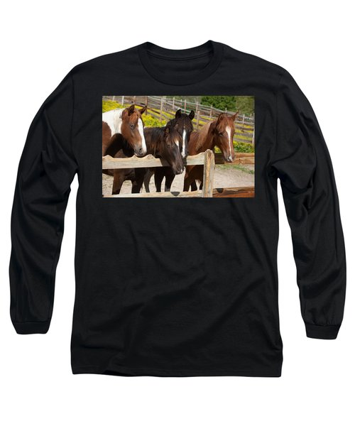 Horses Behind A Fence Long Sleeve T-Shirt