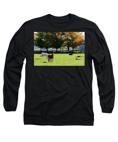Horses In Fall Long Sleeve T-Shirt