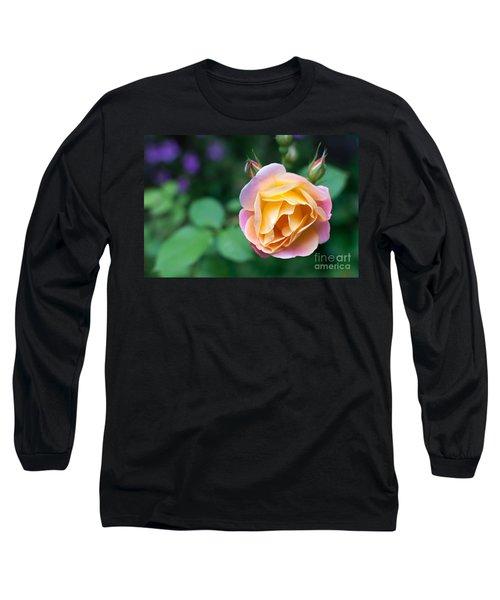 Long Sleeve T-Shirt featuring the photograph Hybrid Tea Rose by Matt Malloy