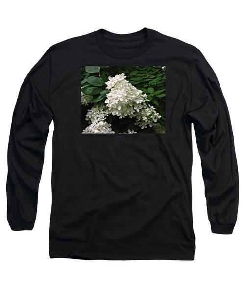 Hydrangea Arborescens ' Annabelle ' Long Sleeve T-Shirt by William Tanneberger