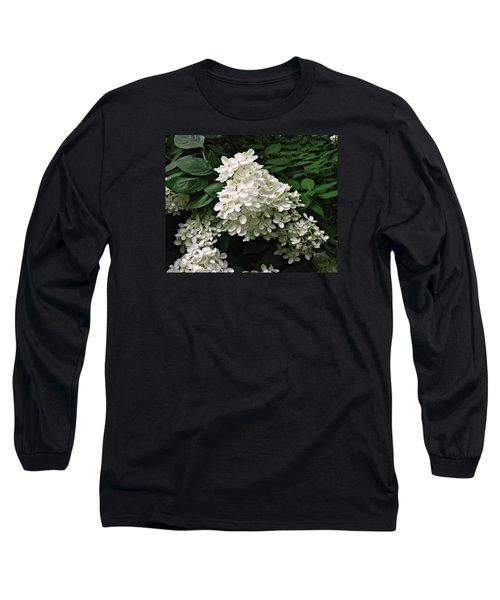 Hydrangea Arborescens ' Annabelle ' Long Sleeve T-Shirt