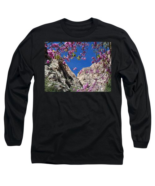 Ice Box Canyon In April Long Sleeve T-Shirt