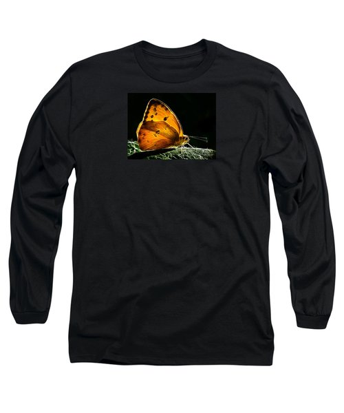 Illuminated Butterfly Long Sleeve T-Shirt by Alice Cahill