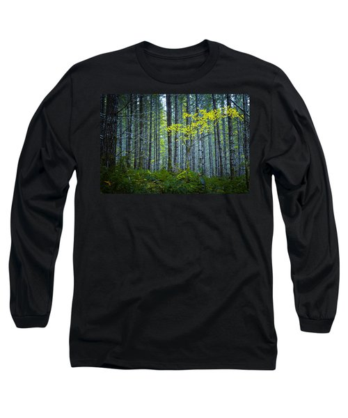In The Woods Long Sleeve T-Shirt by Belinda Greb