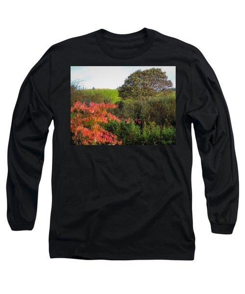 Irish Autumn Countryside Long Sleeve T-Shirt