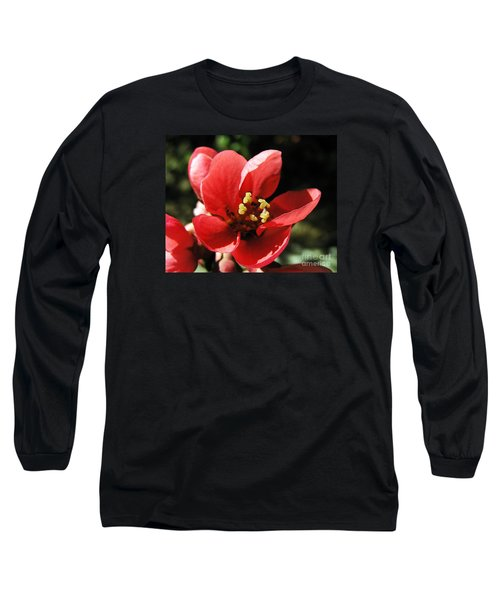 Long Sleeve T-Shirt featuring the photograph Japanese Apple Flower by Vesna Martinjak