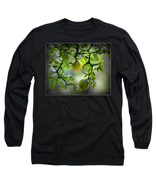 Japanese Orange Tree Long Sleeve T-Shirt
