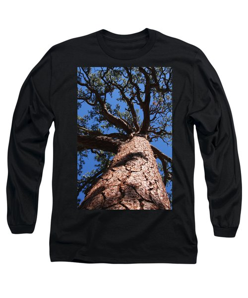 Jeffrey Pine Long Sleeve T-Shirt by Melinda Fawver