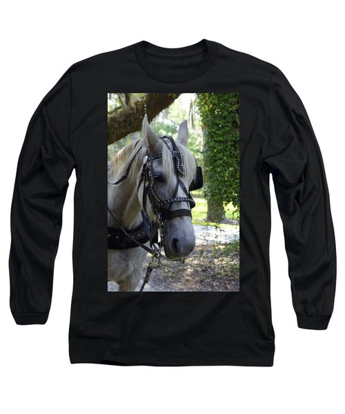 Jekyll Horse Long Sleeve T-Shirt