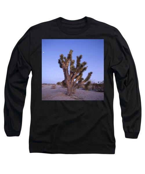 Solitude Of The Joshua Tree Long Sleeve T-Shirt by Shaun Higson